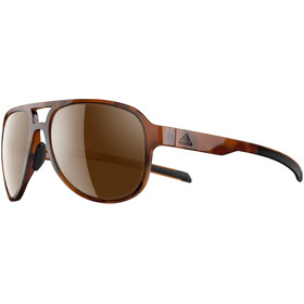 adidas Pacyr Glasses brown havanna/brown